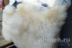 Овечья шкура (на пол, на сиденье) нестриженная